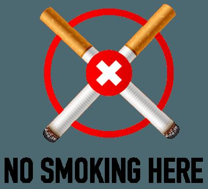 No Smoking Here Icon 411x375 vector