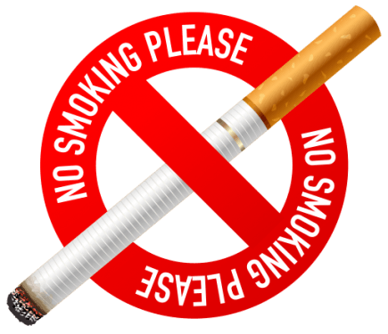 No Smoking icon 435x375 vector