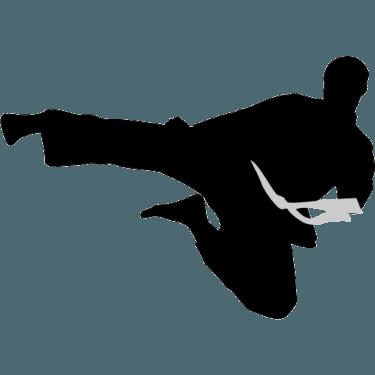 karate-flyingkick-icon