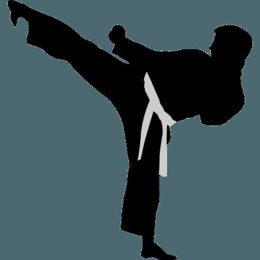 karate-highkick-icon