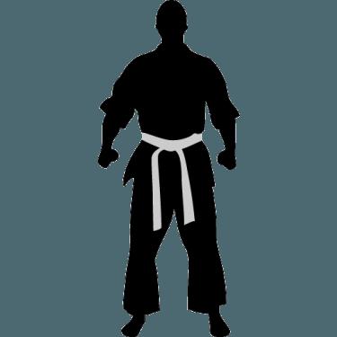 karate-ready-icon