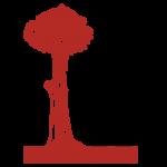 madrid-bear-and-tree-icon