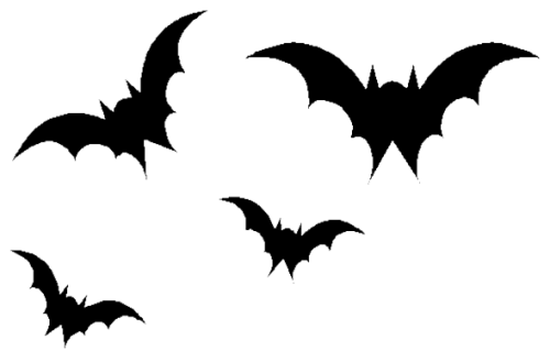 Bat png picture 1 500x329 vector