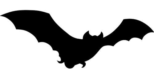 Bat png picture 6 500x257 vector