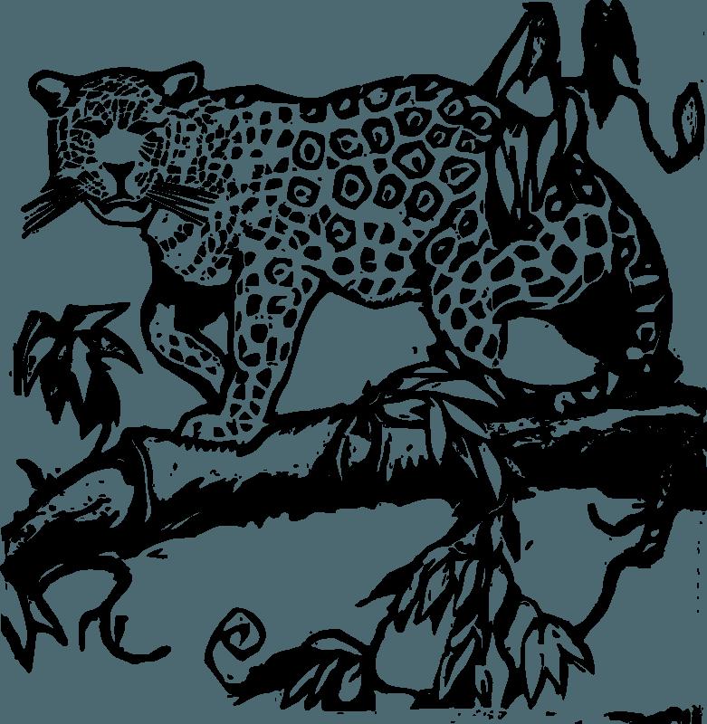 Jaguar Png Clipart (8 Image)