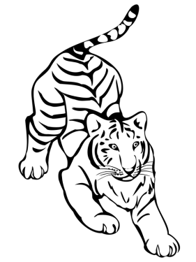 Tiger Png Clipart 22 Image Vector Icon Template Clipart