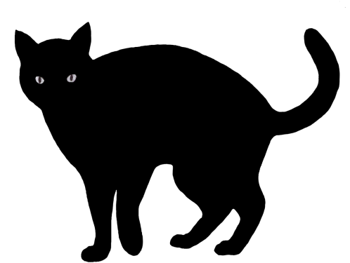Cat PNG Clipart (28 Image) png