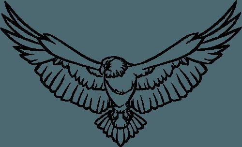Eagle PNG (25 Image) png