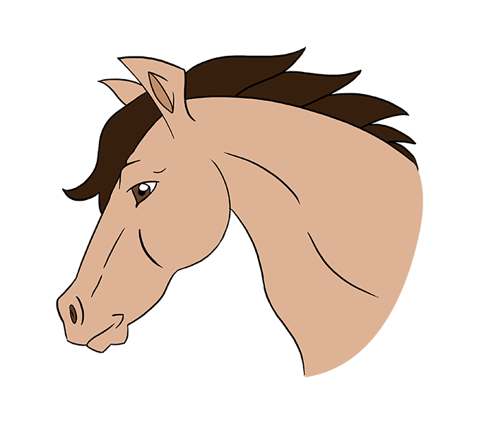 Horse Head Png Clipart (23 Image)