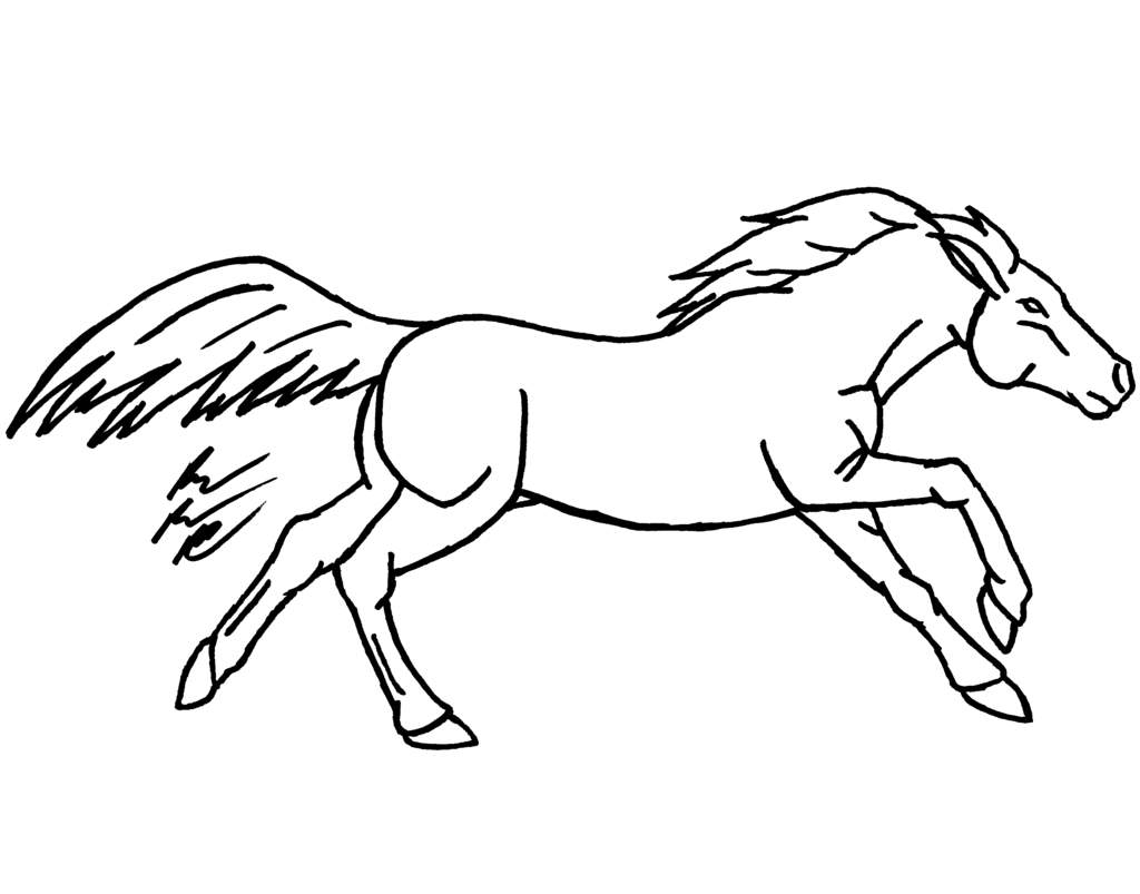 Horse Ears Drawing