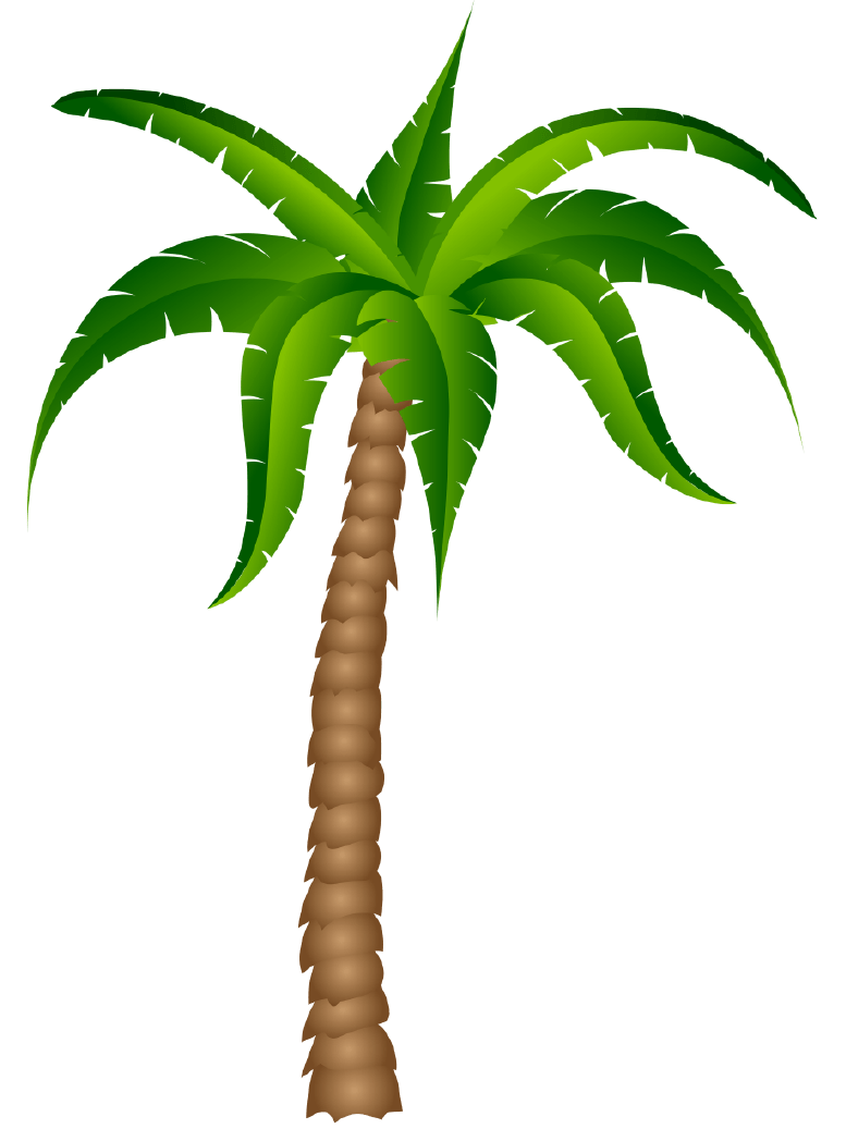 Palm Tree Png Clipart (32 Image) png