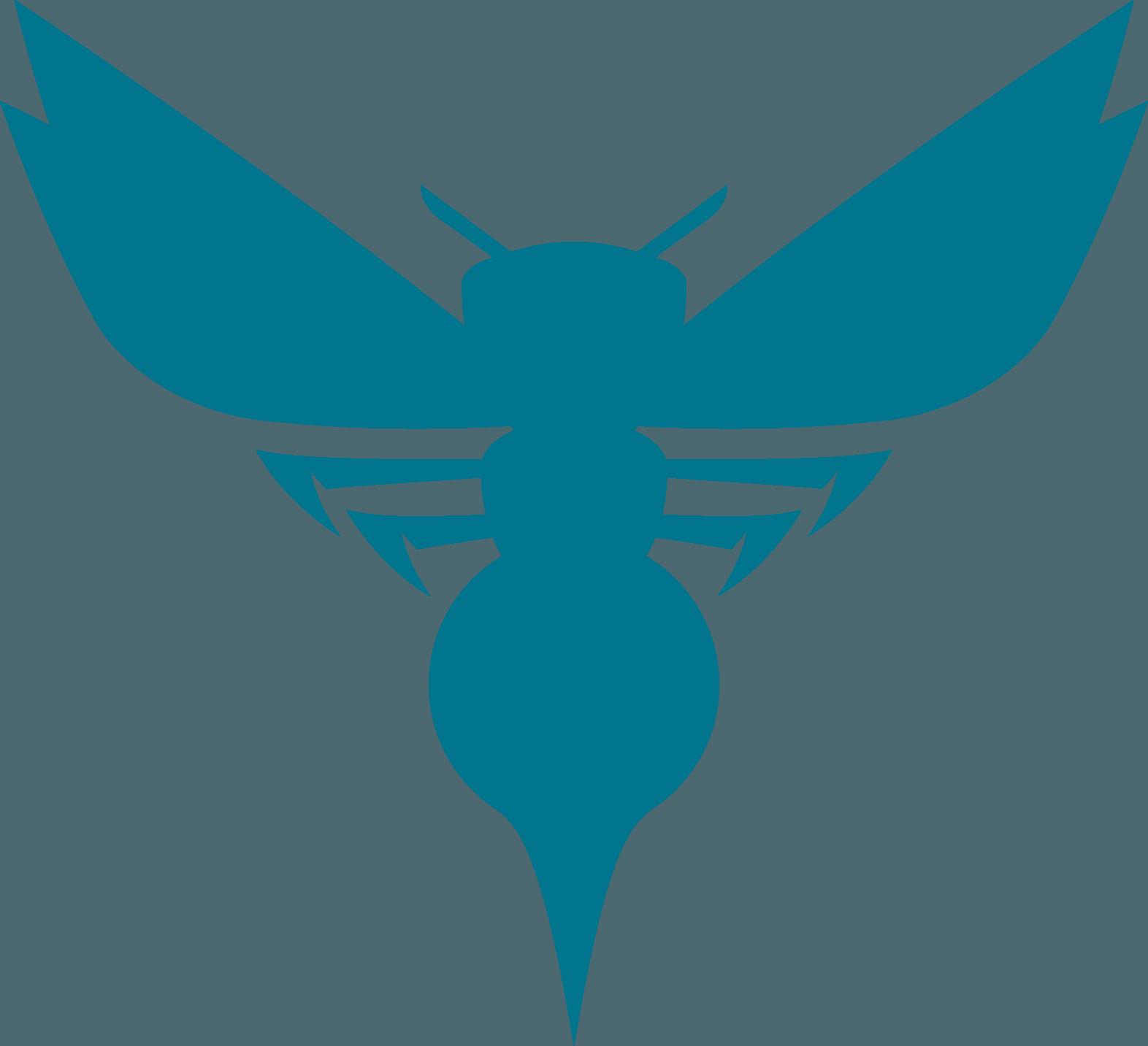 Charlotte Hornets Logo (NBA) png