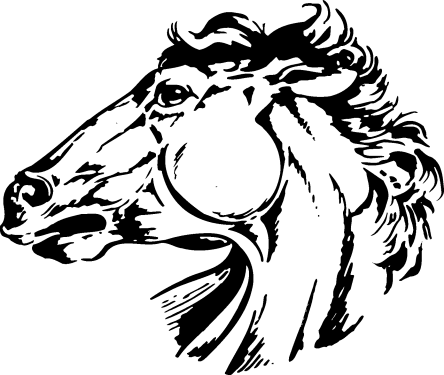 Horse Head Silhouette png