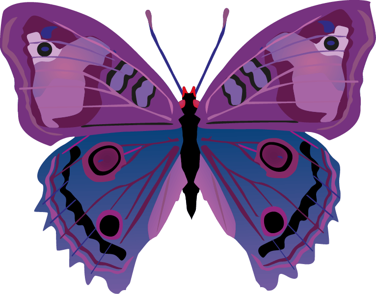 Butterfly png images png