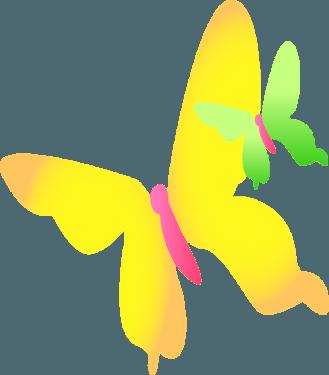 butterfly005 329x375
