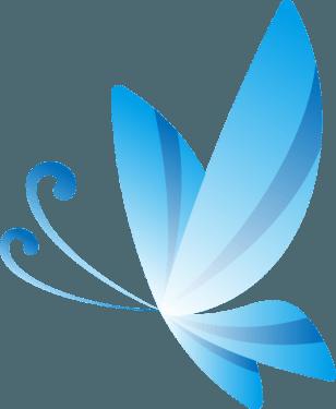 butterfly009 308x375