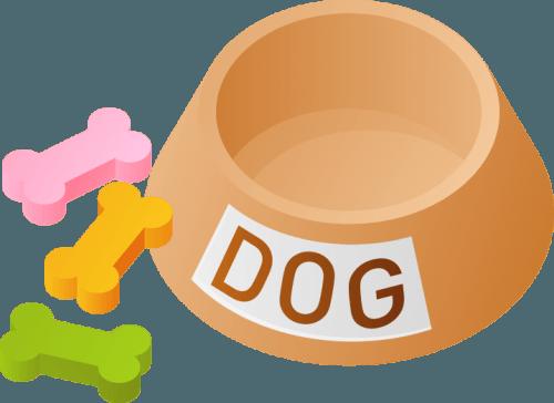 dog001 500x364