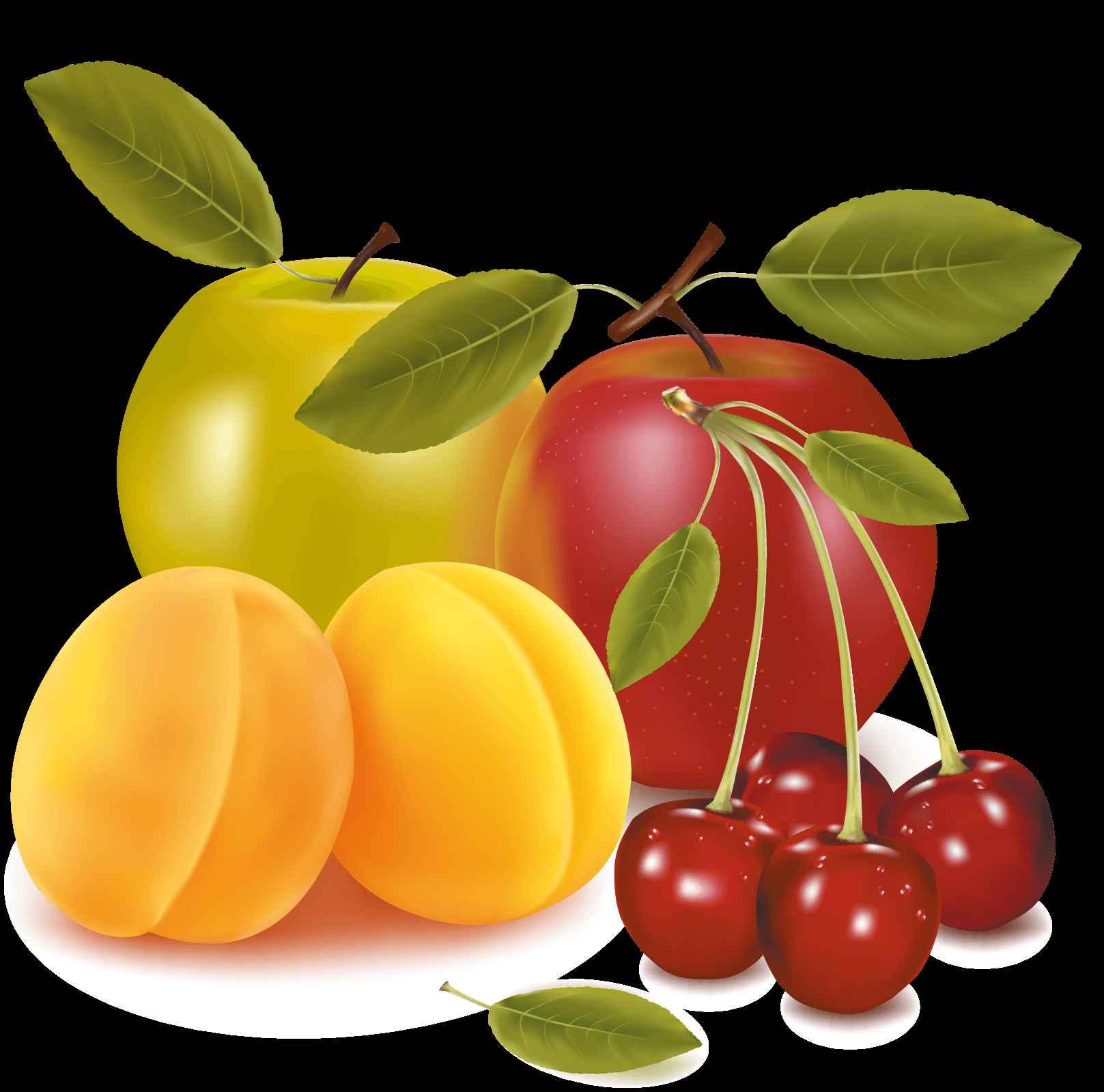 Cherry Apple Pear Vector Art png