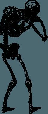 human skulls skeleton001 160x375