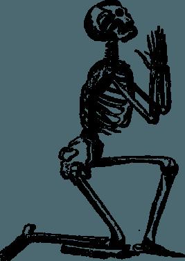 human skulls skeleton006 267x375