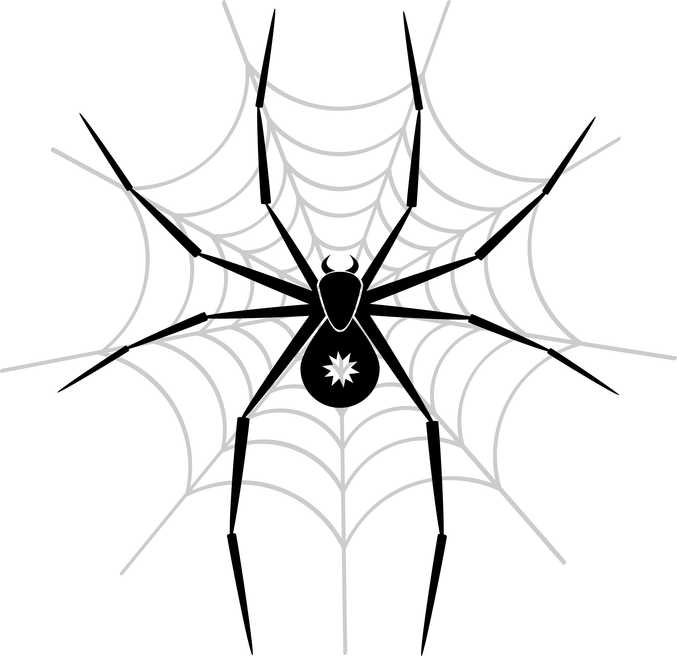 Spider PNG Image png