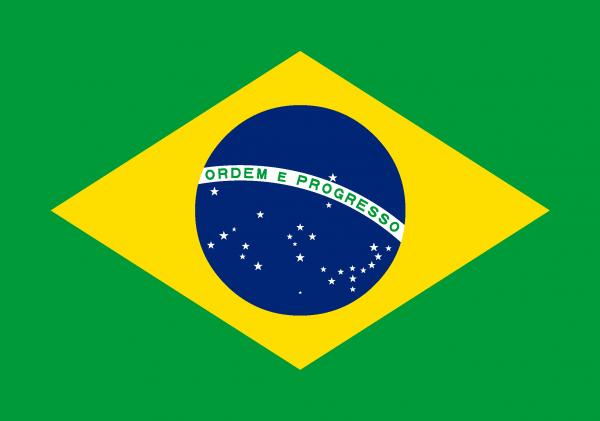 Brazil Flag [Brazilian] png