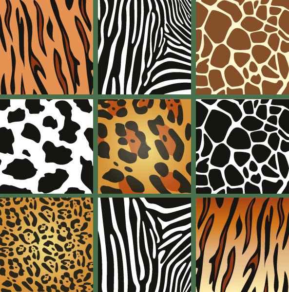 Animal Skin Textures 02 png