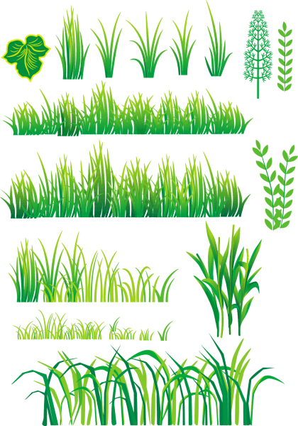 Bamboo and Grass Plant Vector 04 png