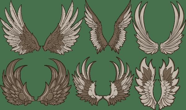 Vintage Wings Vector Set 02 png