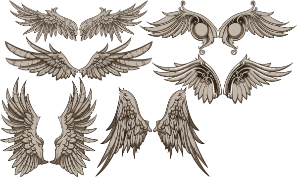 Vintage Wings Design Vector Set 01 png