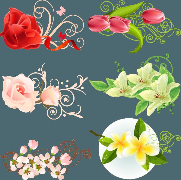 Flowers Vector 01