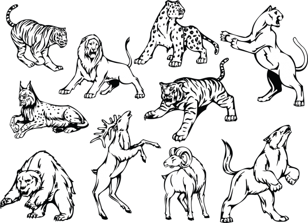 Line art animal 01 png