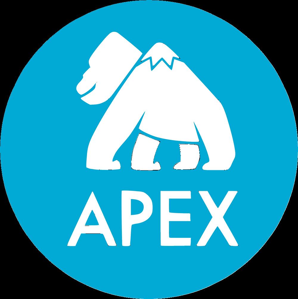 Apache Apex Logo png