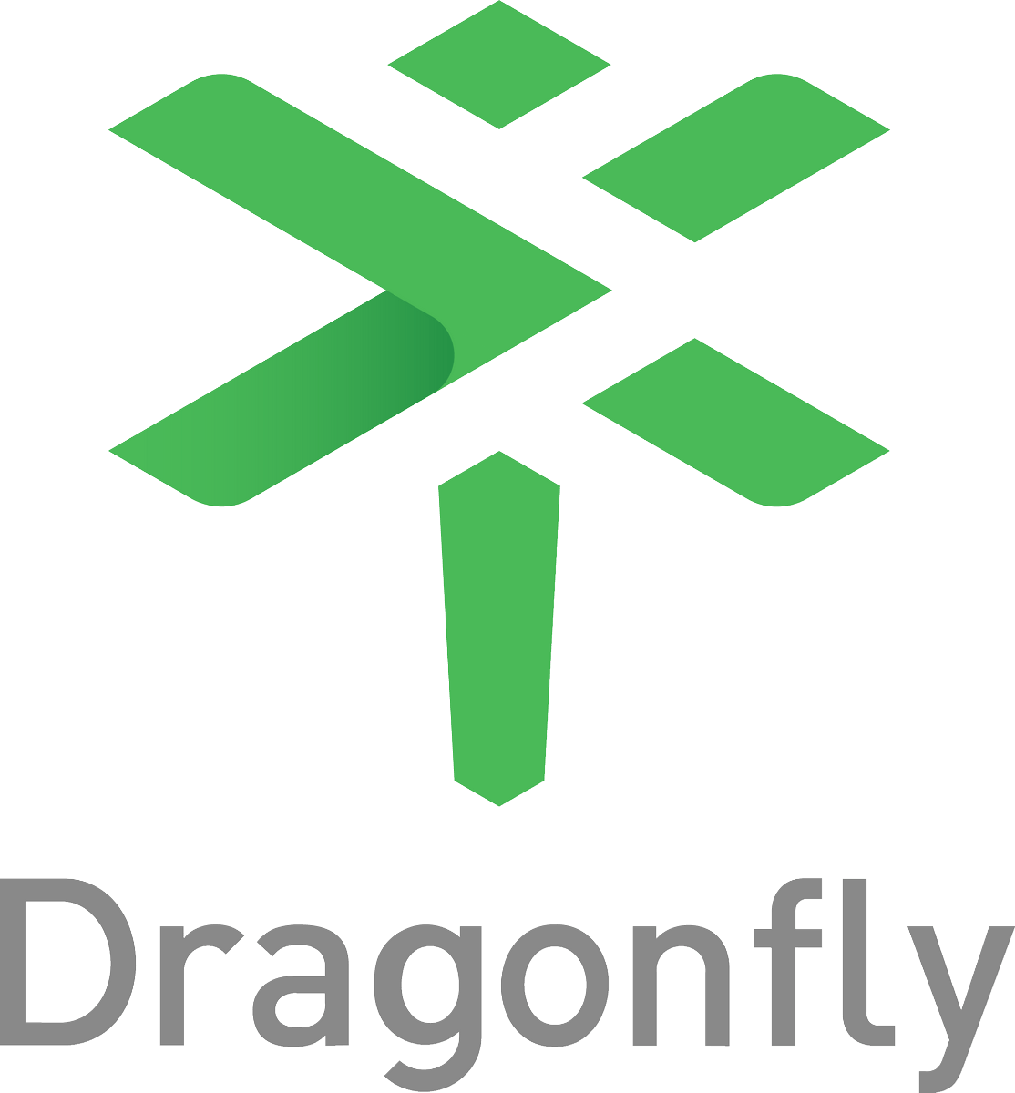 Dragonfly Logo png