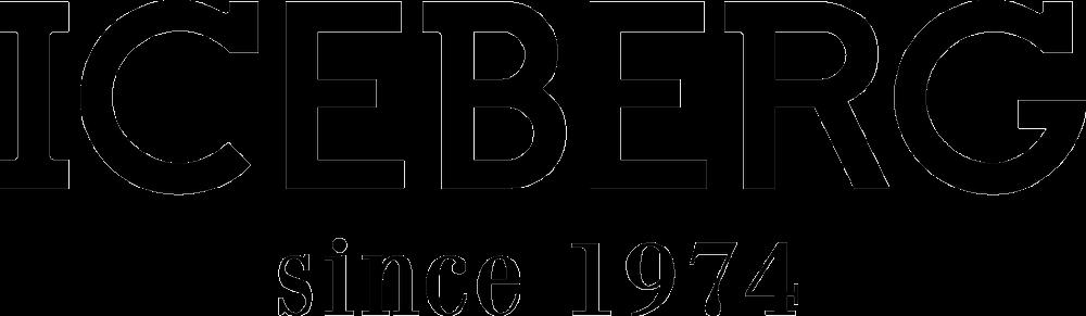 Iceberg Logo png