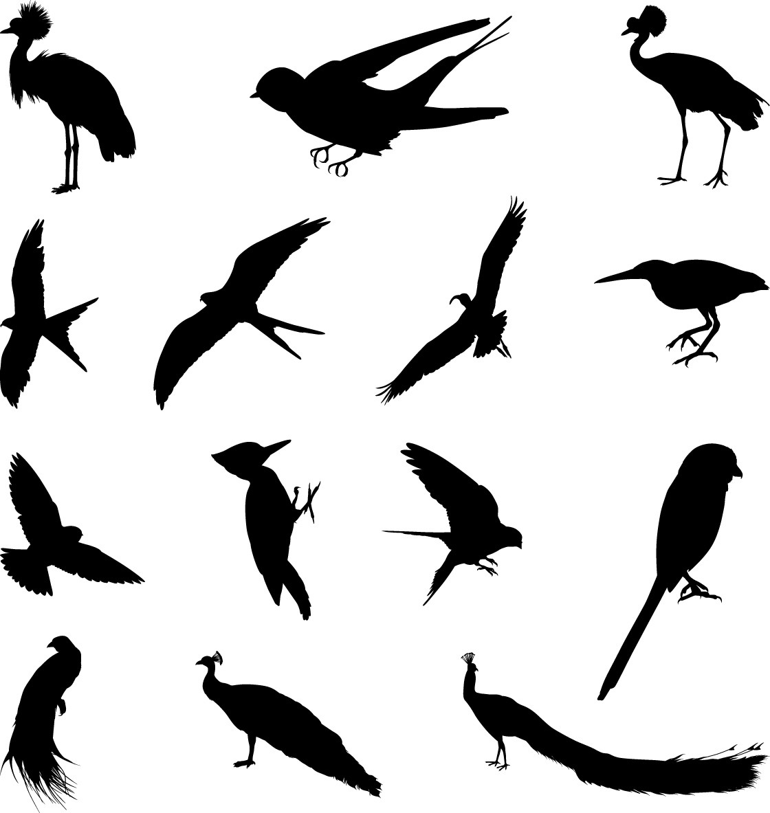 Various birds silhouettes set png