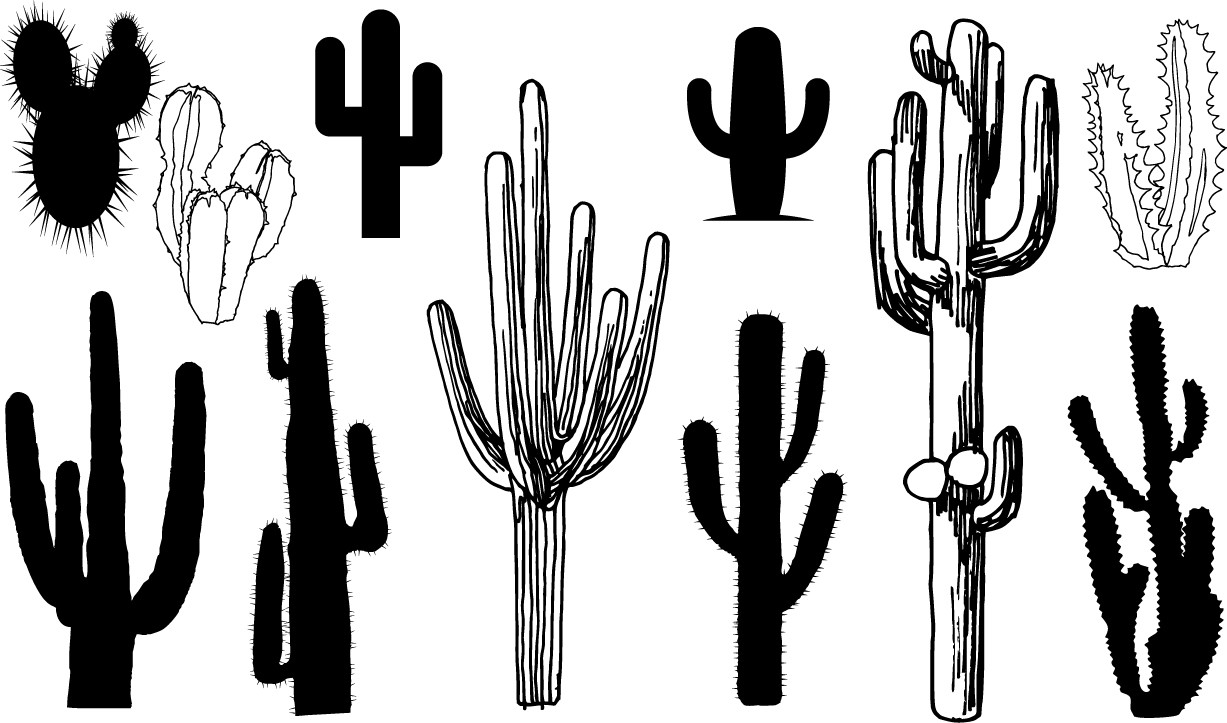 Cactus silhouettes png