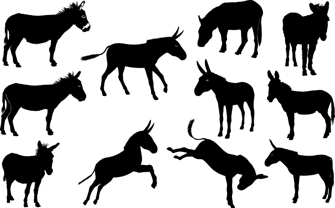 Donkey silhouette png