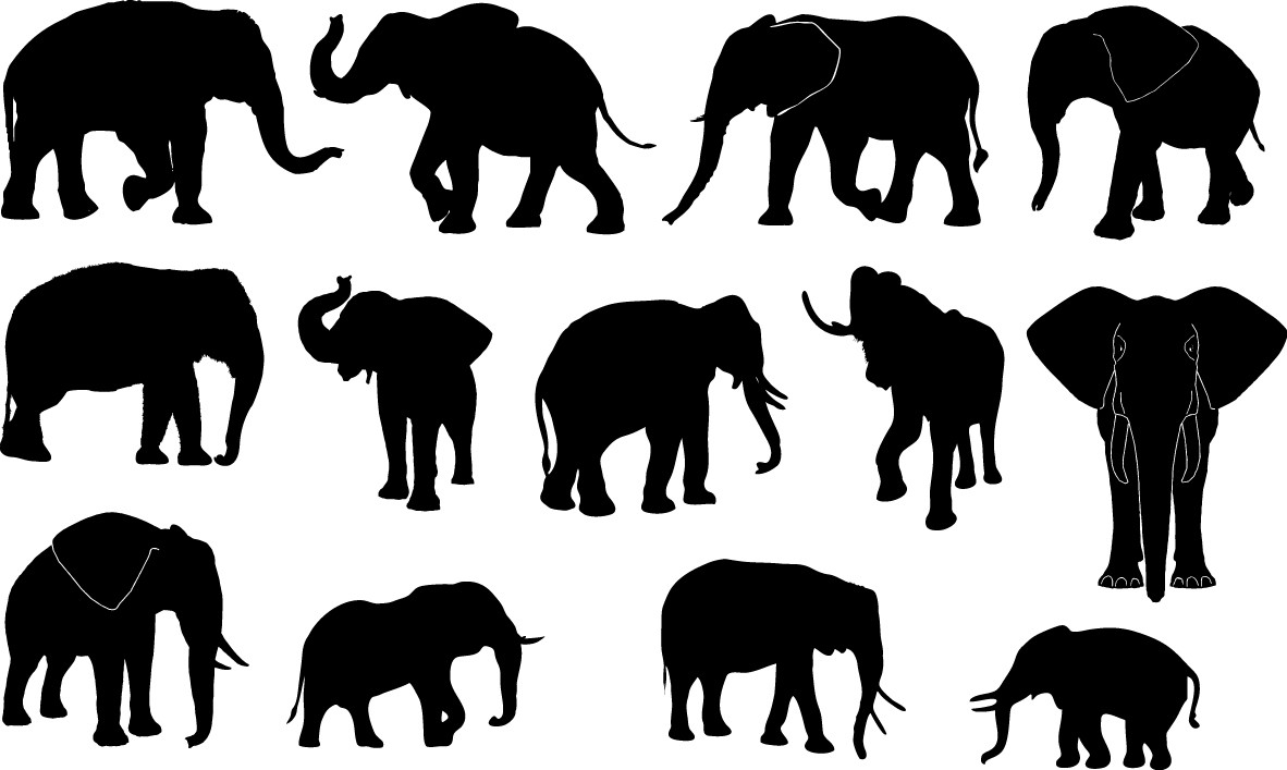 Elephant silhouettes png