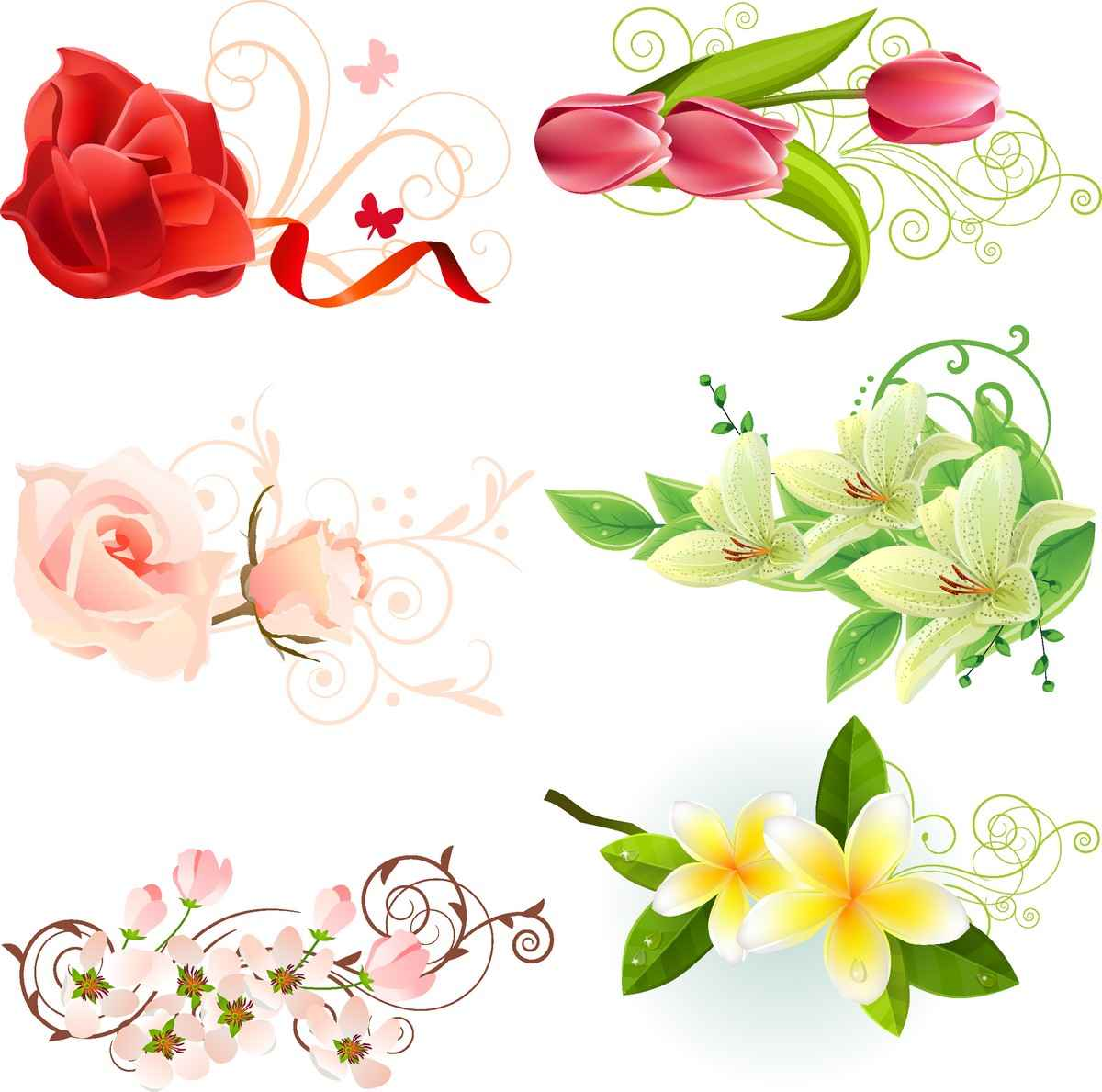 Flowers Vectors png