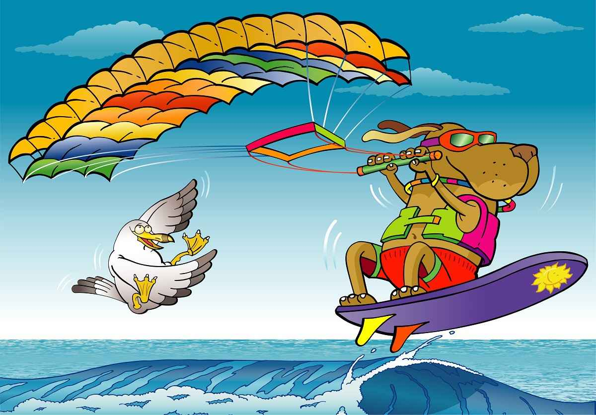 Kite Surf png