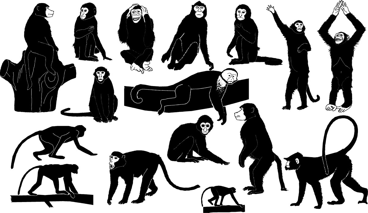 Monkey silhouettes png