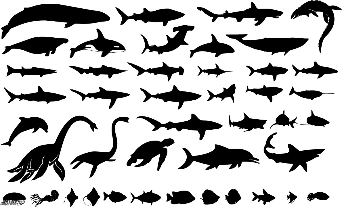 Sea giants silhouettes png