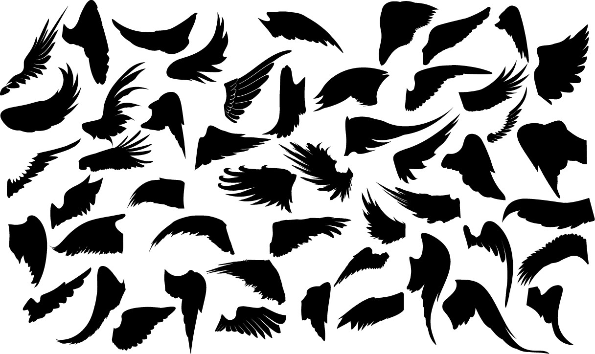 Wings silhouette png