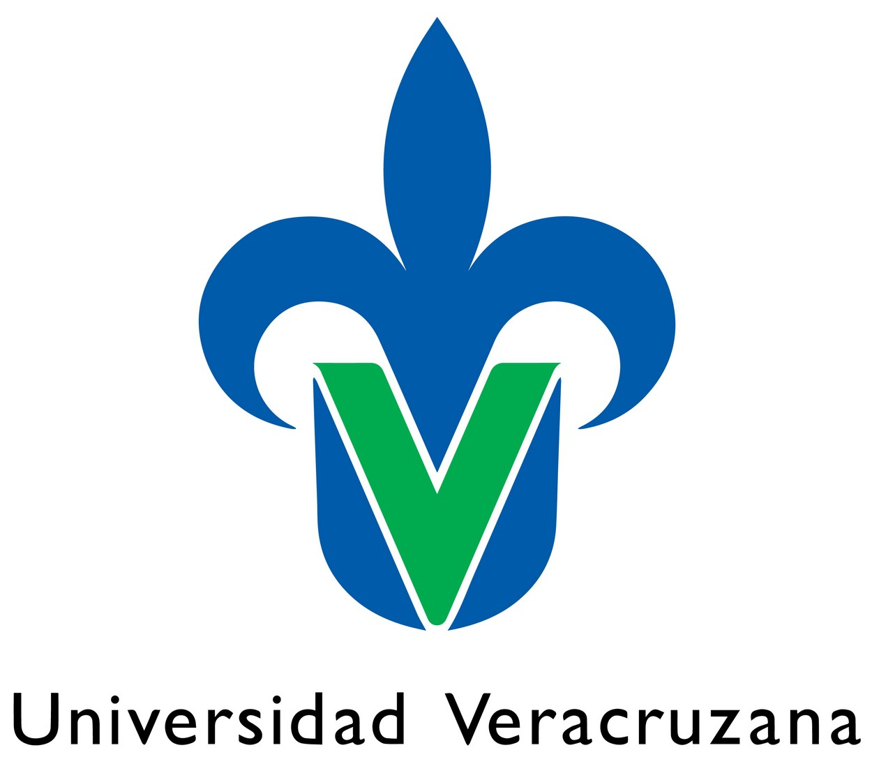 Universidad Veracruzana Logo   UV png