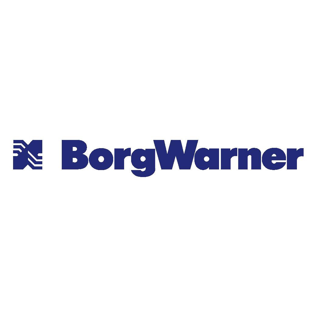 BorgWarner Logo png