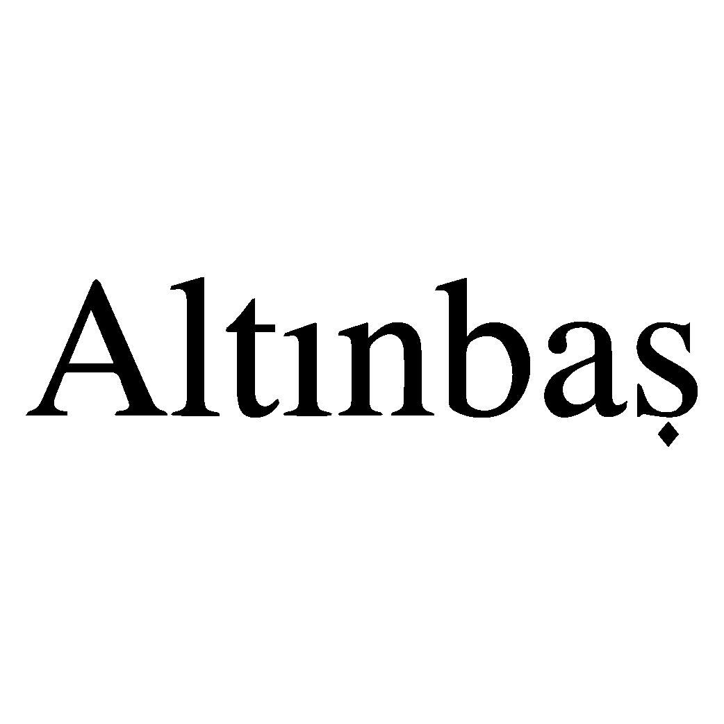 Altınbaş Logo png