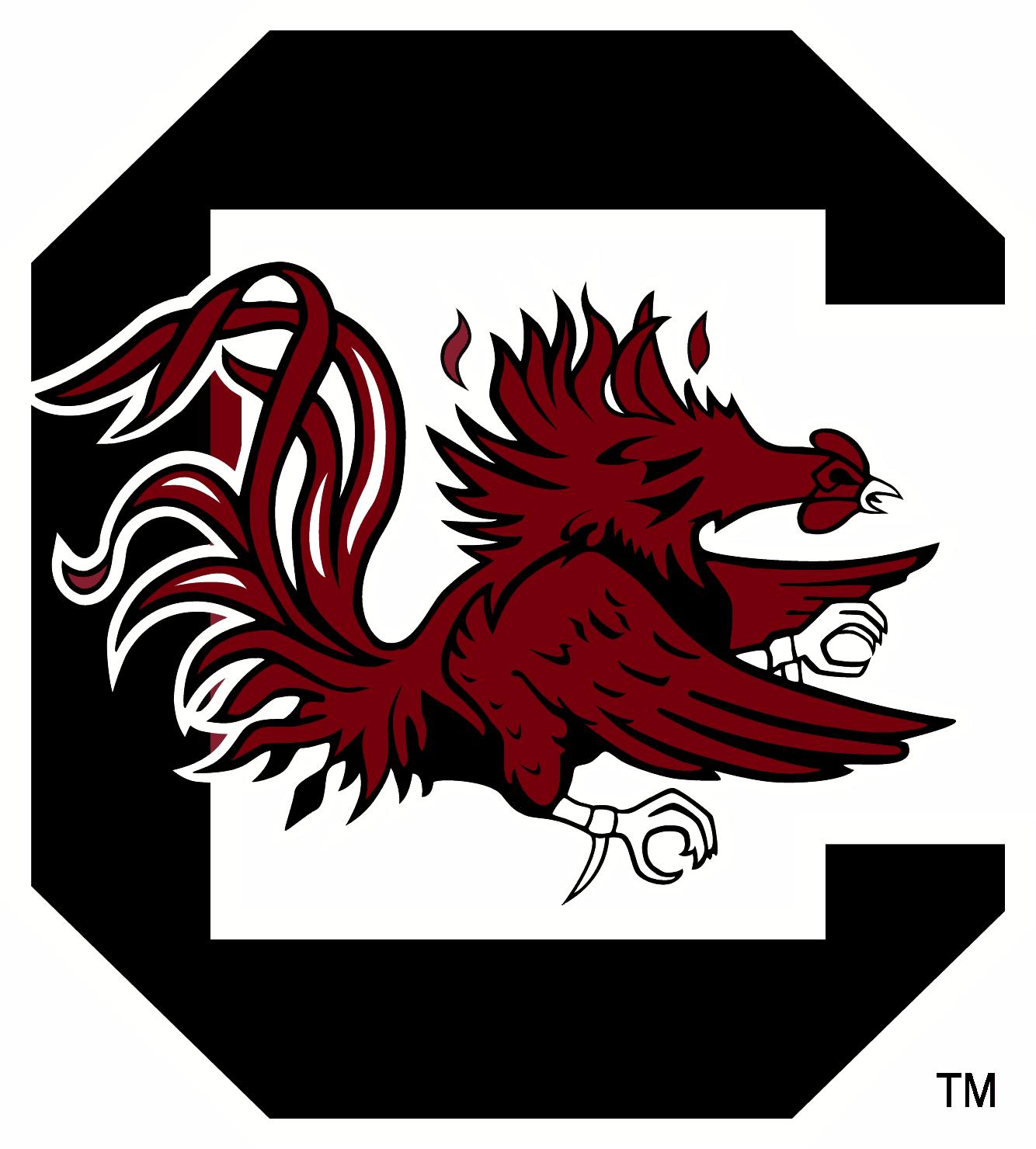 South Carolina Gamecocks Logo png