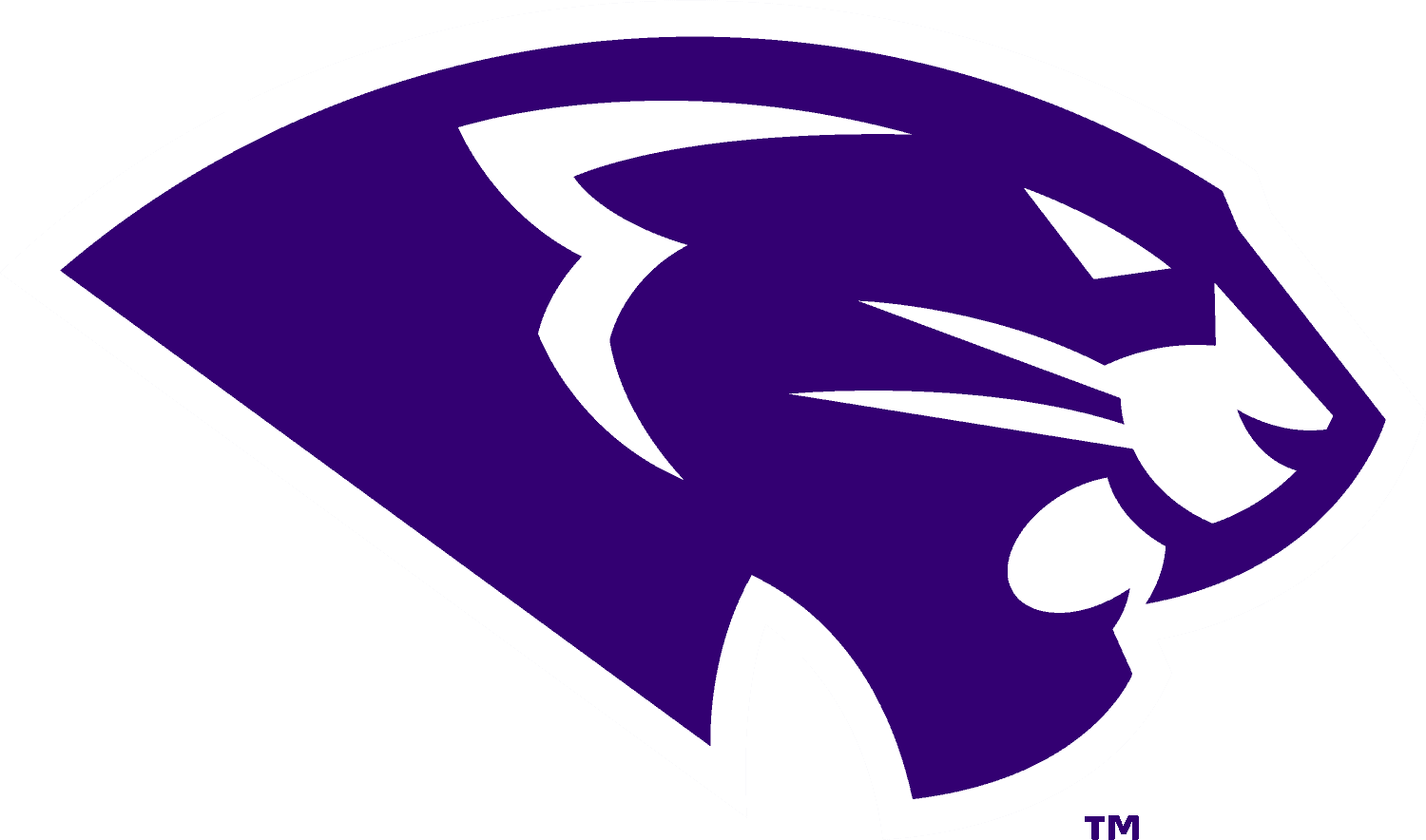 High Point Panthers Logo png