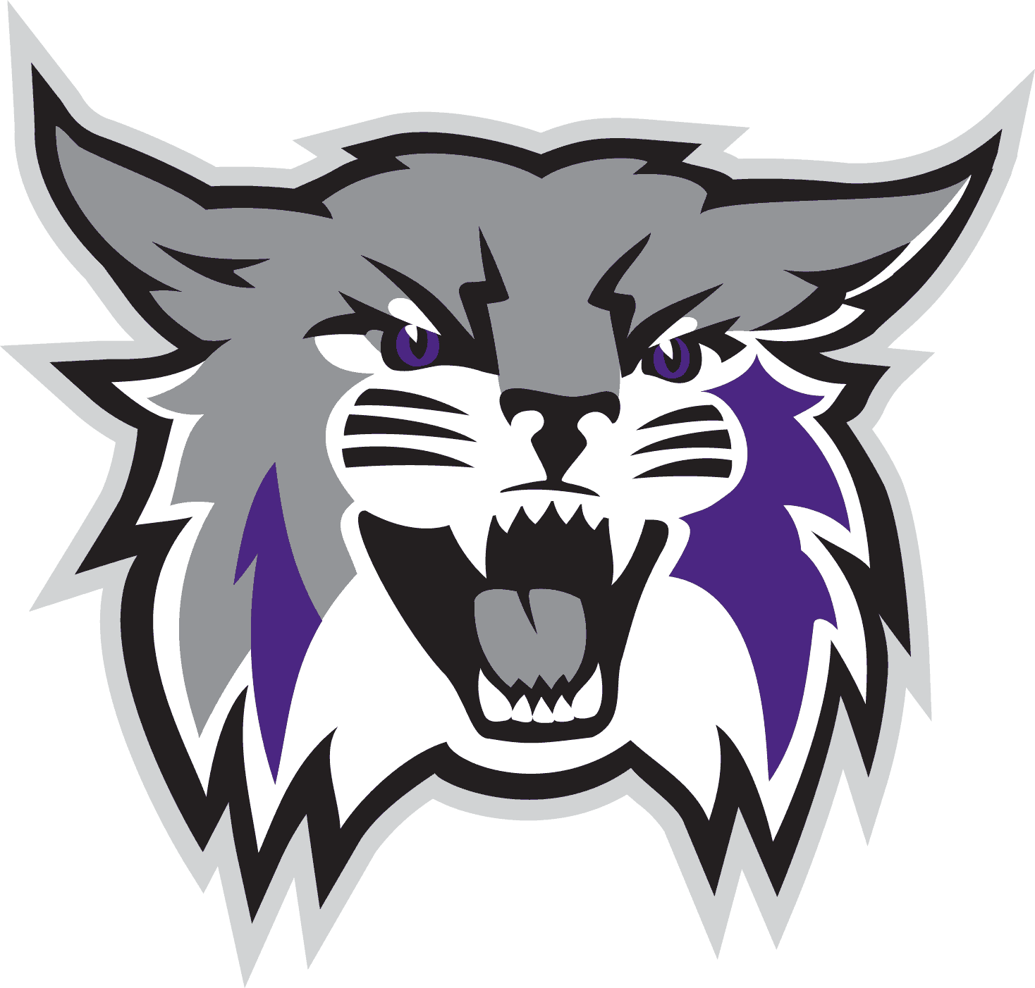 Weber State Wildcats Logo png